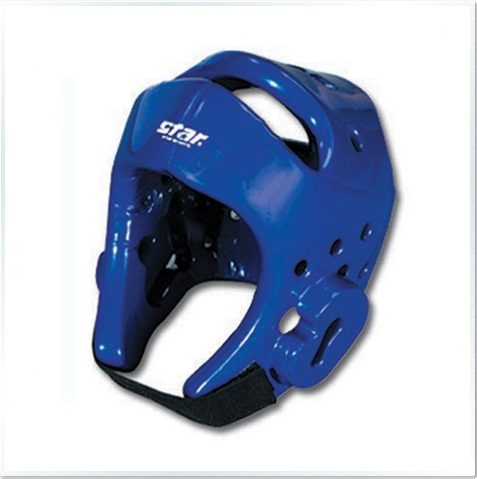 AD800 Blue Head Protector